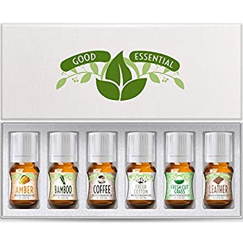 Fragrance Oils Set of 6 Scented Oils from Good Essential - Amber Oil Coffee Oil Leather Oil Fresh Cotton Oil Fresh Cut Grass Oil Bamboo Oil  Aromatherapy Perfume Soaps Candles Slime Lotions!