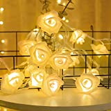 Sirecal Catena Luminosa LED Rose Fiore Luci 14.7 ft 30 LEDs Luci Decorative Illuminazione Decorativa per Interni allaperto San Valentino Natale Matrimoni Feste Natalizia Ringraziamento