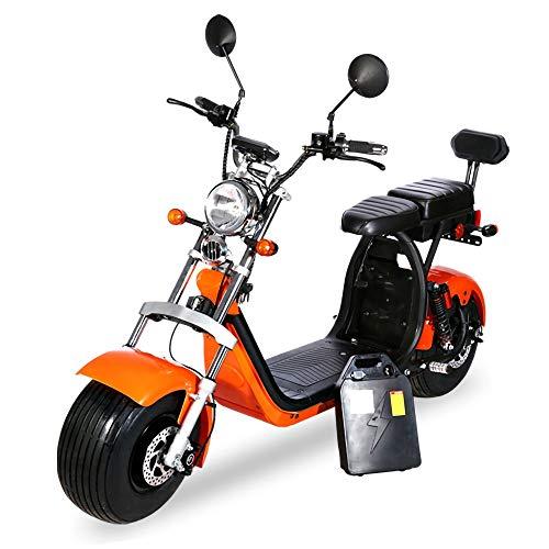XMIMI Elektrofahrrad breiter Reifen Lange Lebensdauer Motorrad Doppel-Lithium-Batterie abnehmbare elektrische verschleißfesten Material Fahrrad