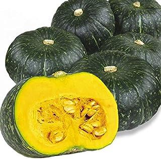 国華園 北海道産他 かぼちゃ 10kg1箱 野菜
