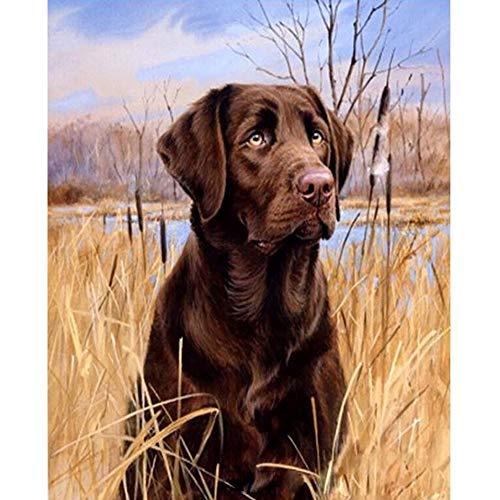 LvJin DIY Digital Painting Labrador Dog, Canvas sin Marco en Blanco y Negro, 16 * 20 in, Pintura al óleo, Juegos de Pintura para niños, Pintura por número