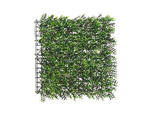 Panneau végétal artificlel - Buis