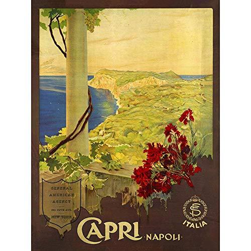 Wee Blue Coo Travel Capri Island Gulf Naples Italy Sea Sun Flower Unframed Wall Art Print Poster Home Decor Premium