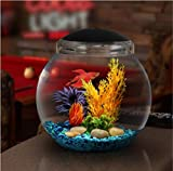 Koller Products 1-Gallon Fish Bowl with LED Lighting (Multiple Color Selections)...