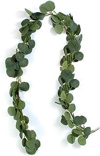 GoMaihe Artificial Eucalipto Guirnalda Planta 2m, Plantas