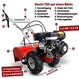 Hecht 750 Benzin Gartenfräse Motorhacke - 6