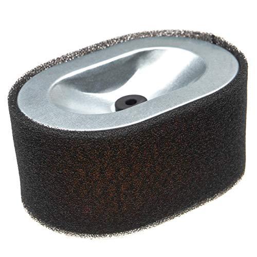 vhbw Filter (1x Vorfilter, 1x Luftfilter) Ersatz für Yanmar 114650-12540, 114650-12570 für Einachstraktor, Einachsschlepper