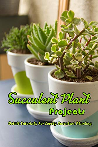 Succulent Plant Projects Detail Tutorials For Lovely Succulent Planting Succulent Plant Guide English Edition Ebooks Em Ingles Na Amazon Com Br
