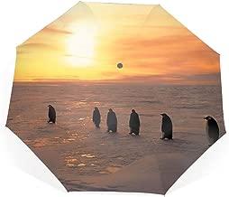 Travel Umbrella, 8 Ribs Finest Windproof Penguins North Sunrise Winter Ice Snow Umbrella with Teflon Coating