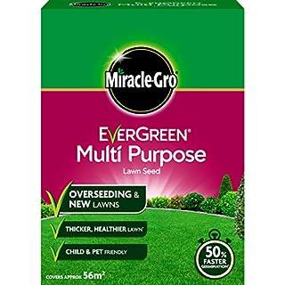 Miracle-Gro EverGreen Multi Purpose Lawn Seed 1.6 kg (B000TAVYHY) | Amazon price tracker / tracking, Amazon price history charts, Amazon price watches, Amazon price drop alerts