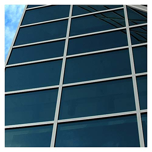 BDF EXNA20 Exterior Window Film Privacy and Sun Control Natural 20, Dark - 36in X 7ft