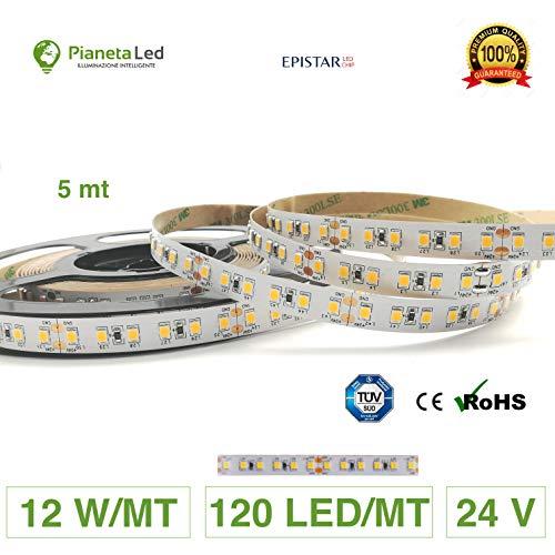 Rouleau de 5 mètres de ruban 600 LED 2835 SMD 12 W/M lumière monochrome au choix 5 m 24 V DC avec adhésif double face 3M MOD. Qualité supérieure. 3000 K Luce Calda (Warm White)