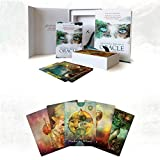 Cartas del Tarot, Oracle Cards, mística Shaman Tarot, Cartas del Tarot Y para Principiantes Set, 64 Destino Predicción Conjunto de Tarjeta, Recuerdos Fiesta de la Familia (Versión en Inglés)
