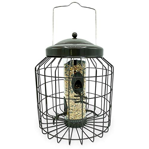Large Heavy Duty Squirrel Proof Seed Bird Feeder for Outdoor Garden use - Mocha Brown - with Strong Galvanised Metal Cage to Deter Squirrels & Large Birds