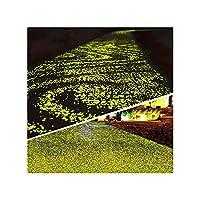 1000個のDIYの発光の装飾のあるホテルの池の魚のタンク砂利輝き石のための石の岩の岩の岩の岩の岩の自転車の車線屋外の装飾 (Color : Yellow)
