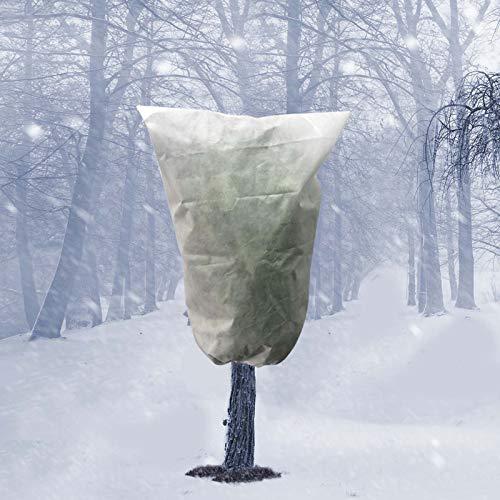 Flamedre Warme Abdeckung Baum Strauch...