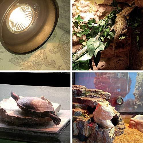 OMAYKEY 3-Pack 75W UVA + UVB Full Spectrum Sun Lamp Sunbathe Heat Lamp/Bulb/Light for Lizard Reptiles and Amphibians