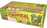 Kisko Giant Tropical Freezies - Box of 50