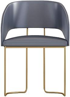 Ryyland-Home - Juego de sillas de Comedor y sillas de Cocina con cojín de Poliuretano, diseño Moderno de Mediados de Siglo, Metal, Gris, 55x55x78cm