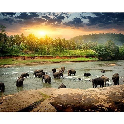 LvJin Manada de Elefantes de Pintura Digital DIY, Lienzo de Color sin Marco, 20 * 26 in, Herramientas de Pintura de Arte, Pintura de Lienzo para niños