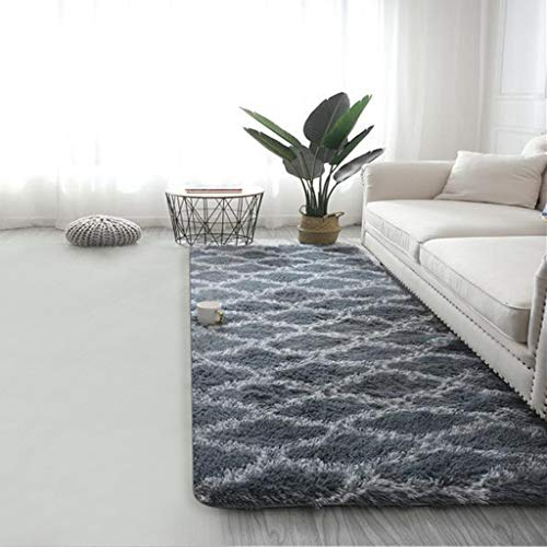 Shaggy Area Rug Modern Indoor Plush Fluffy Rugs, Extra Soft Comfy Carpets, Cute Cozy Area Rugs for Bedroom Living Room Girls Boys Kids, 19.7X 63in (Gray)