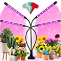 Grow Lights for Indoor Plants - Bifrost Full Spectrum Plant Light with 3/9/12H Timer, 9 Dimmable Brightness & 3 Switch Modes for Indoor Plants Growth