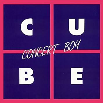 Concert Boy