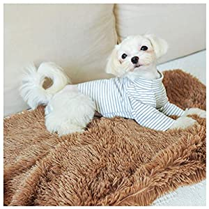 Loyanyy Fluffy Pet Blanket Warm Soft Blankets for Dog Puppy Cat Flannel Throw Dog Bed Covers Pure Plush Mat Khaki Small(22″14″)