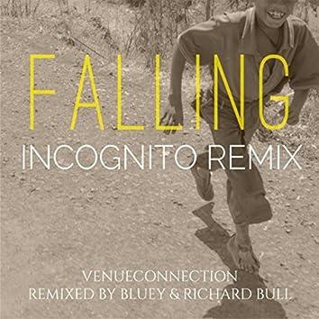 Falling (Incognito Remix) [feat. Incognito]