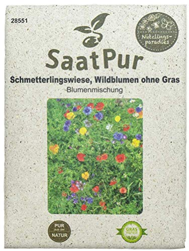 SaatPur Blumenmischung Schmetterlingswiese (Wildblumenmischung ohne Gras)