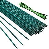 Pllieay 30 Varillas de bambú Verde de 12 Pulgadas con...