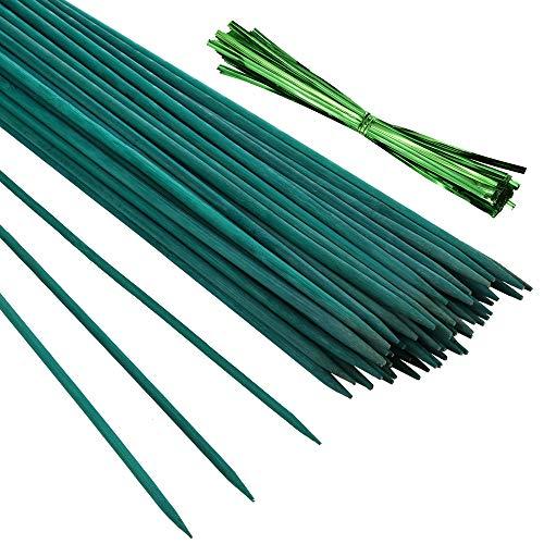 Pllieay 30PCS Bastoncini di bambù verdi da 12 pollici con 60 pezzi di legami metallici verdi, paletto di piante verdi, plettri floreali, bastoncini da giardino per segnaletica in legno