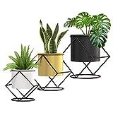 Airogym Indoor Planter, 3 Set Plant Pot with Black Metal Stand, Flower...