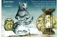 ねこの引出し フランス製猫のポストカード  ★Janvier-Chablier