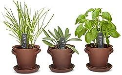The best window sill herb garden kits review 2018 self watering window garden rustic charm herb trio kit best indoor garden kit workwithnaturefo