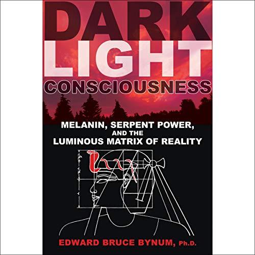 Dark Light Consciousness audiobook cover art