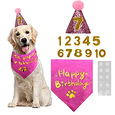 BIPY Dog Birthday Set Bronzing Bandana Pink Hat with Numbers Reusable Puppy Headwear Caps Adorable Headdress Grooming Supplies Pet Party Celebration Decoration (Pink)…