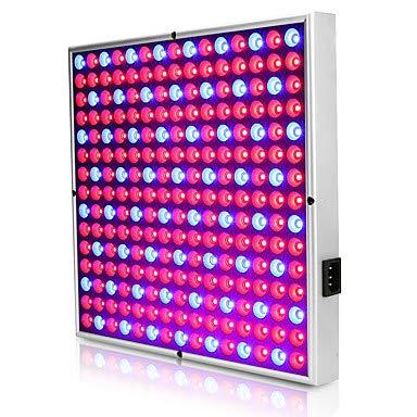 QAZW 30W LED Wachsen Licht 1500-1890lm 225LED Vollspektrum Einfach Installieren Für Gewächshaus Hydroponische Wachsende Leuchte 85-265 V Heim/Büro Gemüsegewächshaus