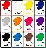 WanTo 12 Unids/Set Inglés Tarjetas Flash de Color A4 Plástico Kindergarten Aula Decoración Cartel Material Didáctico Juguete Educativo Niños, 12 Unids