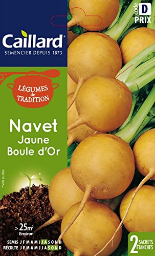 Caillard PFCC14004 Graines de Navet Jaune Boule d'Or