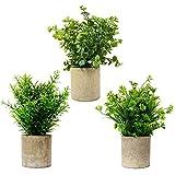 3 unidades verde surtidos planta artificial trébol bosso y romero planta sintética de plástico en macetas de pulpa de papel para decoración de jardín, interior y exterior