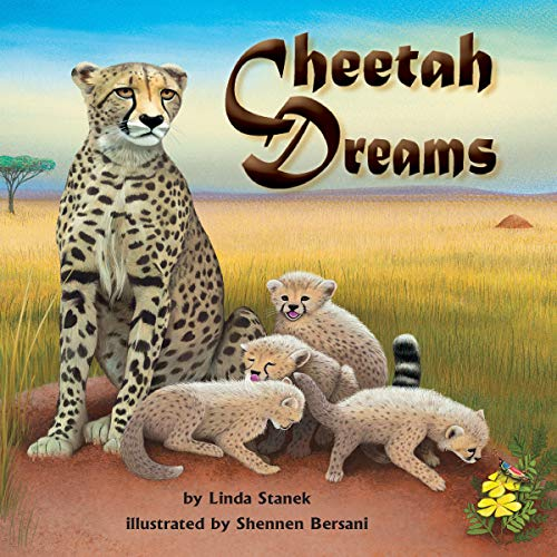 Cheetah Dreams copertina