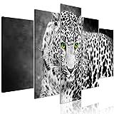 decomonkey Bilder Tiere Natur 200x100 cm 5 Teilig