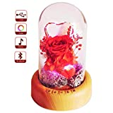 SWEETIME Mother's Day Red Rose Night Light Real Eternal Rose in Glass Dome, Preserved Rose Flower Lamp with Bluetooth Speaker,Forever Flowers Gift for Mom, Wife, Girlfriend on Mother's Day