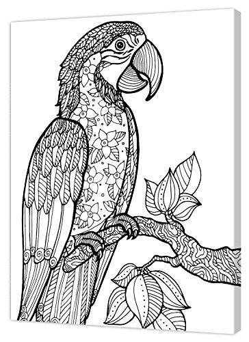 Pintcolor 7805.0 châssis avec Toile imprimée à colorier, Bois de Sapin, Blanc/Noir, 40 x 50 x 3,5 cm