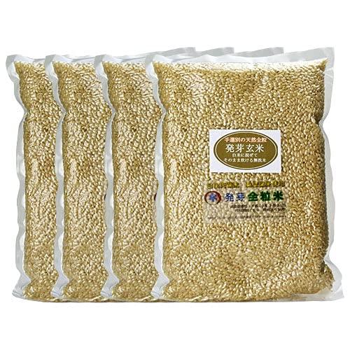 スタリオン日田 大分県産 無洗米 手作り発芽玄米 4kg (1kg真空パック×4袋) 準無農薬 (減農薬)