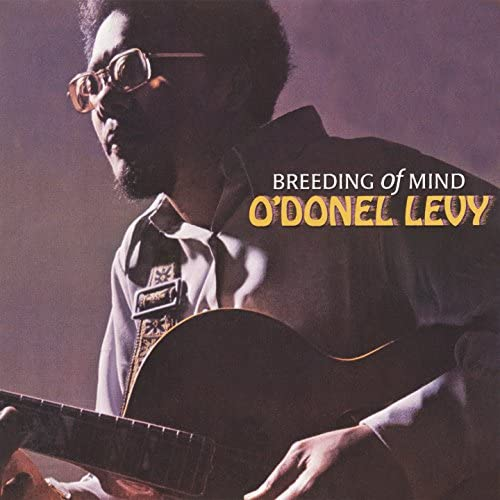 O'Donel Levy