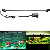 Subosi - Lámpara de tubo para acuario de 62 cm. con 33 LED SMD5050 de luz blanca sumergible - Producto de decoración e iluminación...