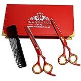 Rouge ciseaux de coiffure - 6' professionnel Barbier ciseaux - de coiffure et Salon amaigrissement ciseaux set - Parfait pour Coupe de cheveux avec Style - Salon d'esthétique - cas Giftset