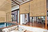 ZY BlindsOutdoorWindowBlinds, BambooWaterProofWater Proof LightFilteringRollUpWindowRollerShadeswithValanceforPorch,Courtyard,Balcony,Kitchen,Doors, Color 13
